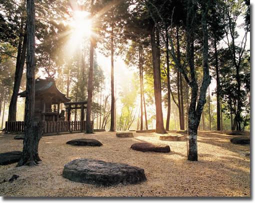 紫香楽宮:甲賀寺跡